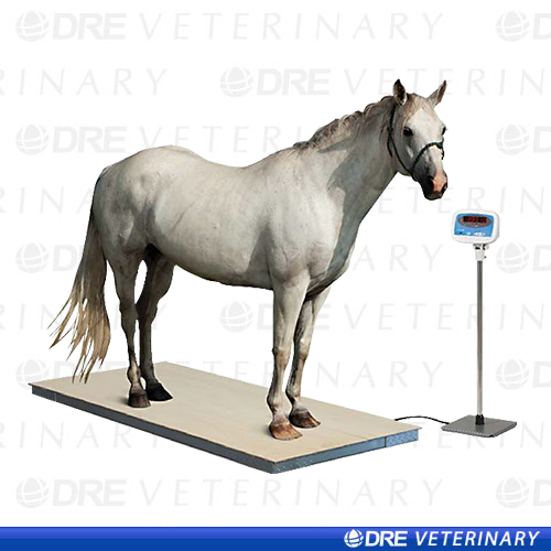 Equine Digital Floor Scale