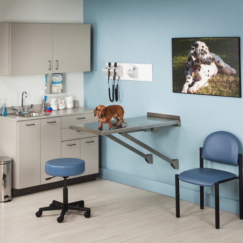 Dre One Room Veterinary Practice Exam Room Package