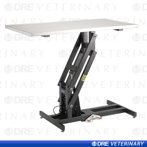 DRE Economy Electric Lift Table