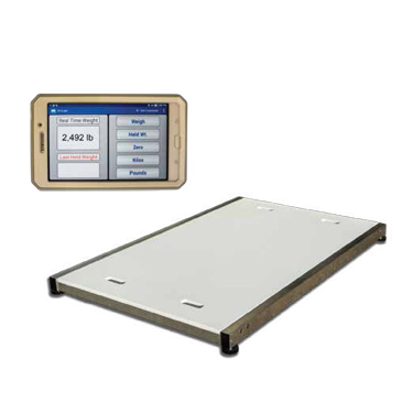 Zoological Large Mobile Platform Scale
