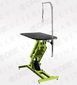 DRE Elite Electric Grooming Table