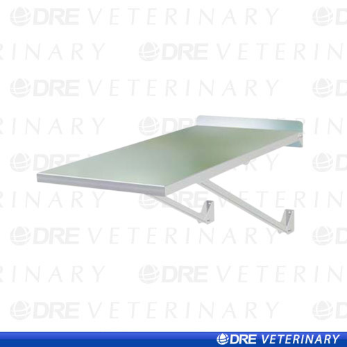 Clearance - Wall Mounted Exam Table