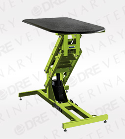 DRE Classic Electric Grooming Table