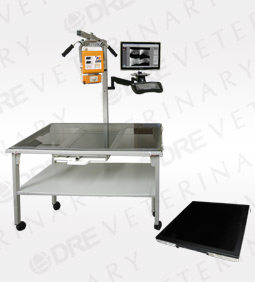 DR 4300 17x17 Mobile Table Digital X-Ray System