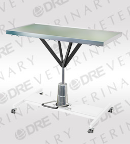 DRE Element Plus Mobile Hydraulic Table