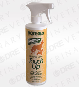 No Rinse Kote-Glo No-Rinse Touch-Up Spray - 16 oz. size, 12 bottles per case