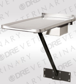 Stationary Wall Mount Exam Table