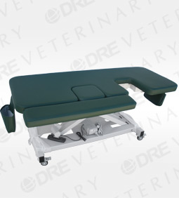 DRE Deluxe Ultrasound Table