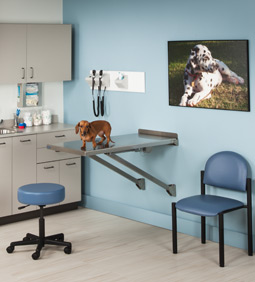 DRE One Room - Veterinary Practice Exam Room Package