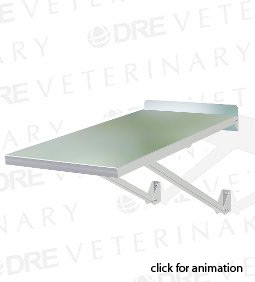 DRE Classic Fold Up Wall Mounted Exam Table