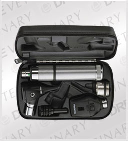 Standard Ophthalmoscope, MacroView Otoscope, Convertible Nickel Cadmium Handle, Hard Case