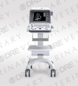 DRE FS-32P Digital Ultrasound Machine