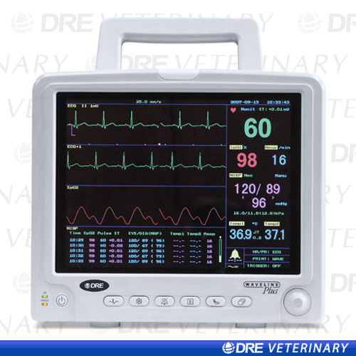 vital signs research paper