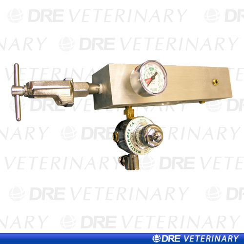 Single E-Cylinder Manifold with Regulator and Gauge: Oxygen