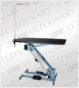 DRE GVT 1600: Master Lift Electric Fixed Top Grooming Table w/ Rotating Post