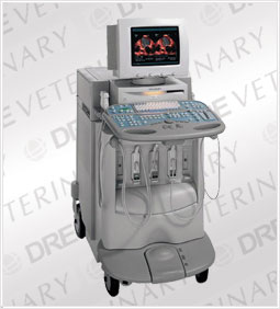 Siemens / Acuson Sequoia 512 Ultrasound Machine